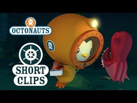 Octonauts Creature Report book by Simon - Alibris